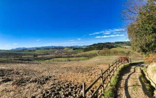 Agriturismo Tenuta i Mandorli - panorama