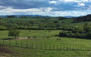 Agriturismo in Toscana - Vista della tenuta