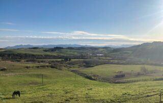 Agriturismo Tenuta i Mandorli - Vista delle colline toscane