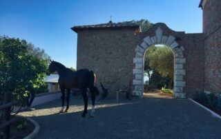 Agriturismo Tenuta i Mandorli - La porta antica